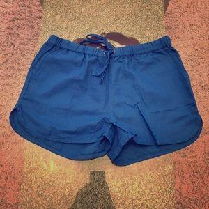 J Crew Blue Shorts